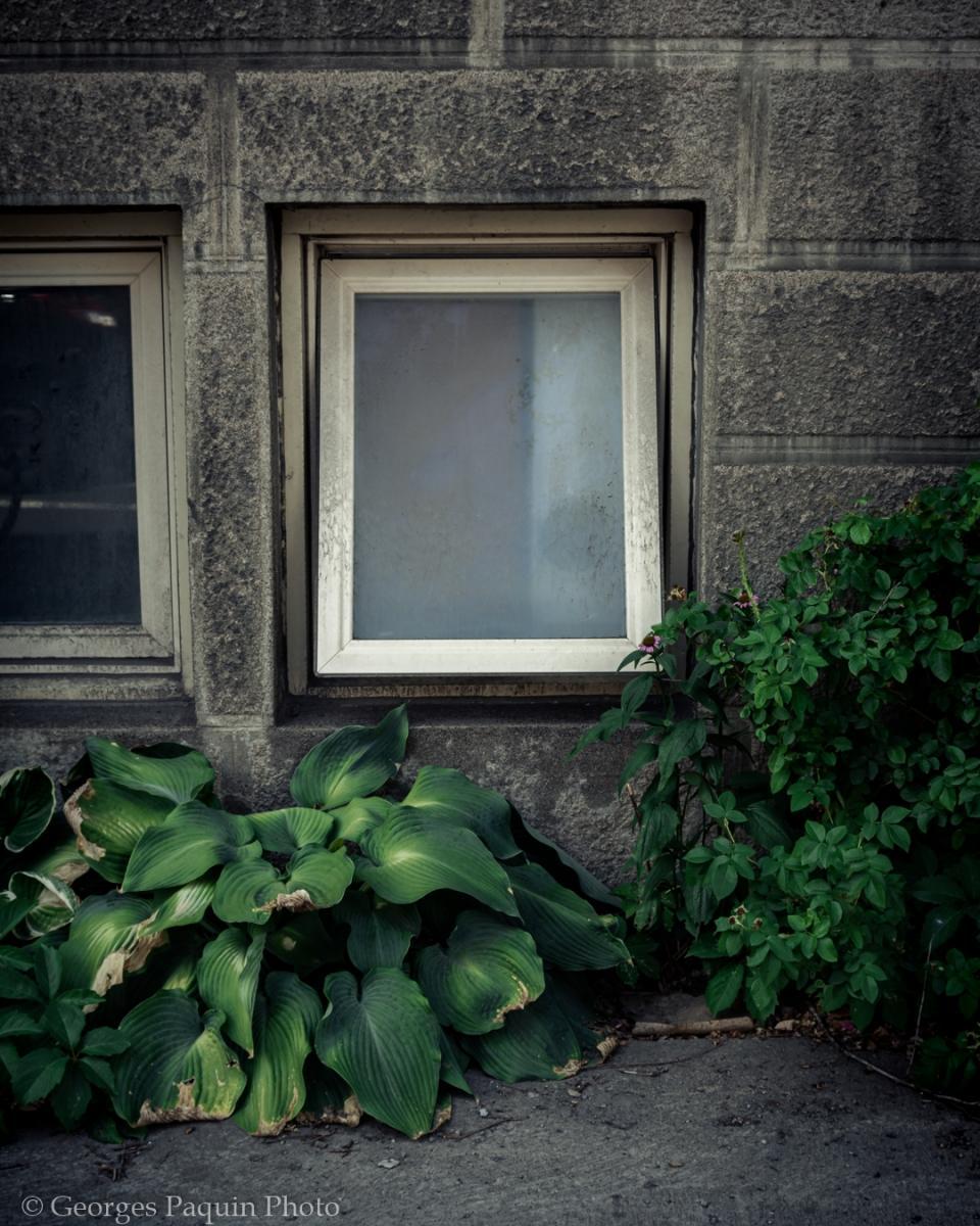 Photographie urbaine