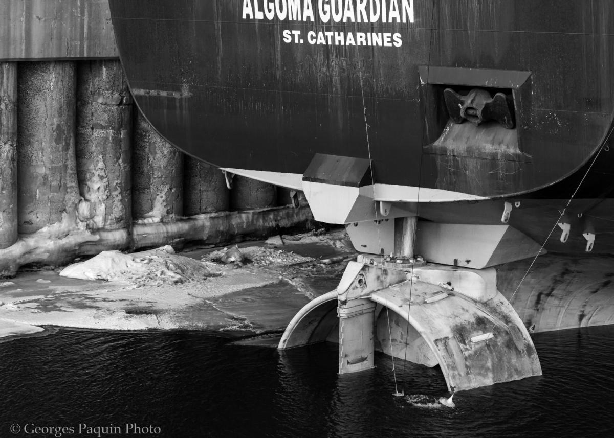Les bateaux du Vieux-Port de Montréal