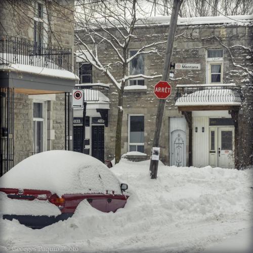 Hiver 2019 à Montréal